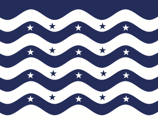 This has both navy and white stars.